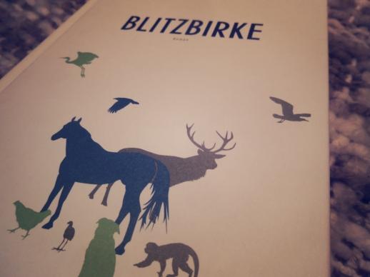 blitzbirke